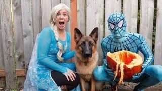 Frozen Elsa Saves Sniper For Blue Spiderman