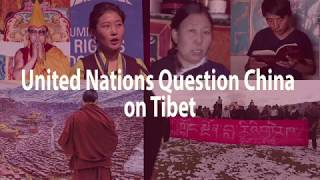 United Nations Question China on Tibet