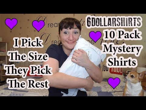 10 Pack Mystery Shirts From 6DollarShirts #2