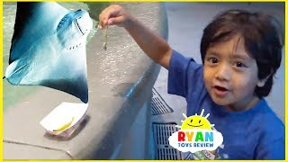 Ryan's First Time Feeding Stingray at the aquarium for kids!!!