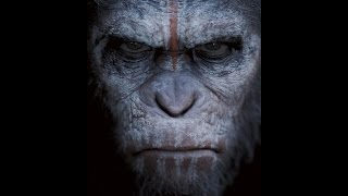 Dawn Of The Planet Of The Apes Review | Chasing Cinema