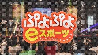 『ぷよぷよeスポーツ』セール中_価格訴求篇 thumbnail