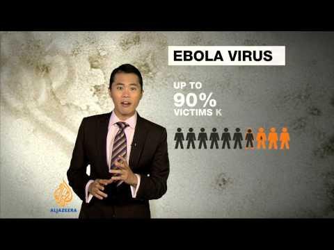 Guinea deadly epidemic confirmed as Ebola virus