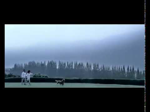 UOB comercial (2011)