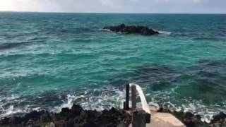 A walk along Bermuda's Railway Trail with Love. Travel. Events.