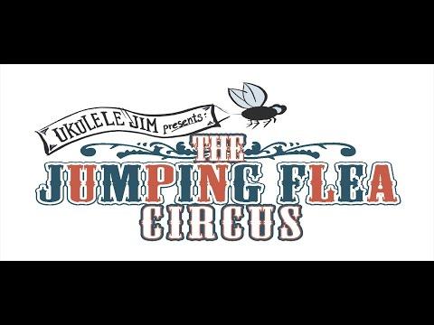 The Jumping Flea Circus - An original song by Ukulele Jim