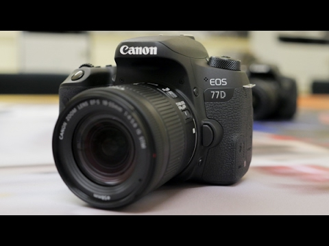 Canon EOS 800D & 77D - First Look