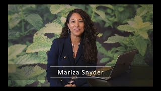 Empowered Life Series: Mind Over Matter, Mariza Snyder