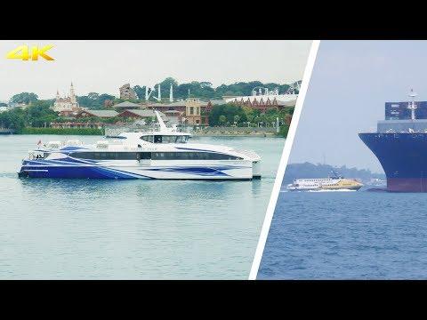 trip-report-singapore---batam-with-majestic-fast-ferry-|-catamaran-ferry-|-broewnis-travel