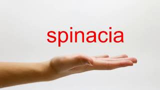 How to Pronounce spinacia - American English