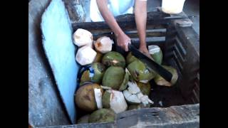 Street Vendor In Manila Preparing My 1st Ever Fresh Coconut