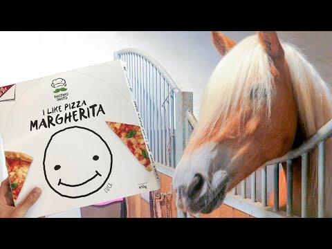 PIZZA für meine PFERDE! Wie die Pizza meinen Pferden schmeckt / LUCA PIZZA Concrafter