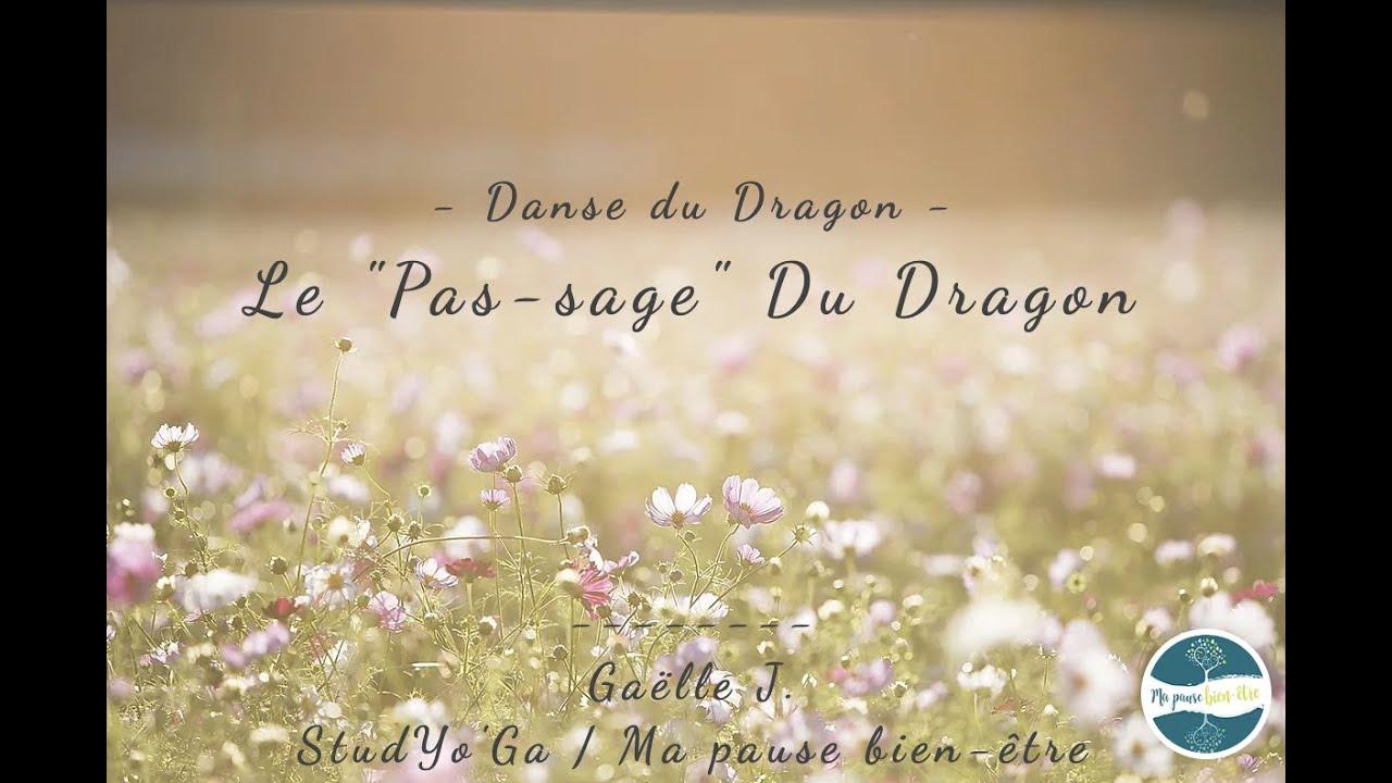 """Solstice d'Eté : Le """"Pas-Sage"""" du Dragon"""