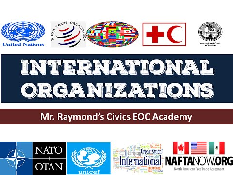 International Organizations   Governmental and NGOs