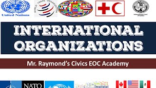 International Organizations   Governmental and NGOs