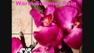 Michael Nowak - Warm Summer Rain