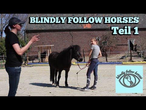 WIR BESUCHEN JENNY VON BLINDLY FOLLOW HORSES! | Bodenarbeit mit Smart Smart ♥ | Marina und die Ponys