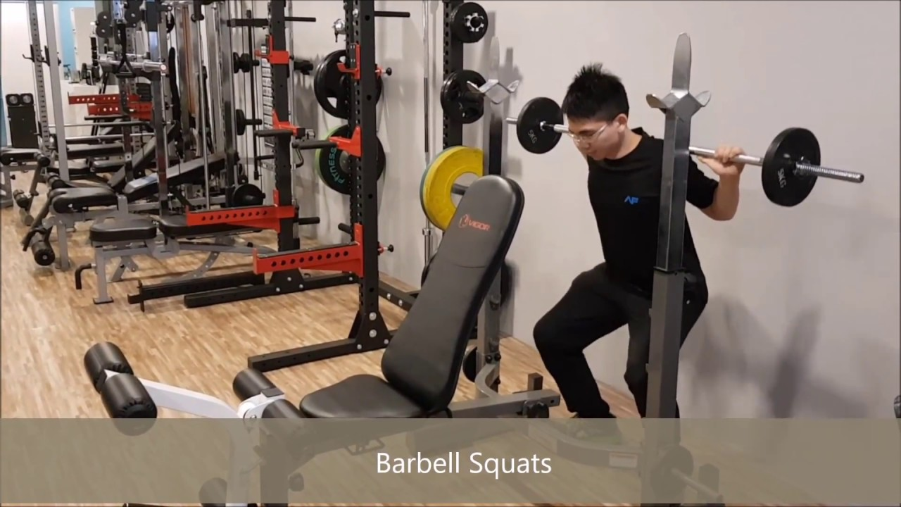 Homegym sg foldable compact weight bench v youtube