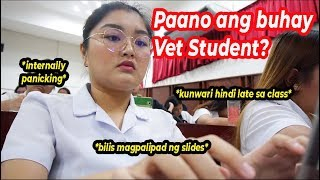 A Day in the Life of a DELAYED Vet Student   Arah Virtucio