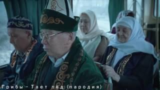 ТОП 5 ЛУЧШИХ ПАРОДИЙ НА ПЕСНЮ ГРИБЫ - ТАЕТ ЛЁД / 2017