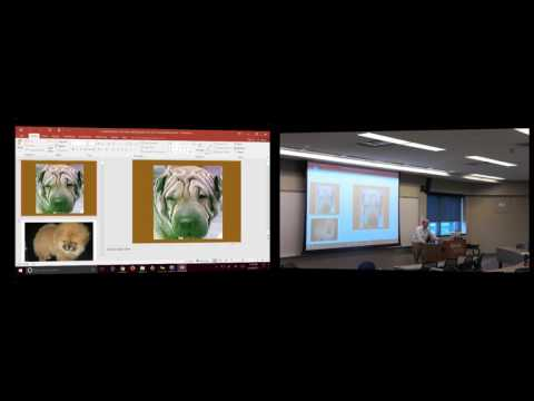 Information Technology: Lecture 4 June 26, 2017