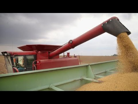 Explaining a US-China 'trade war' with soybeans