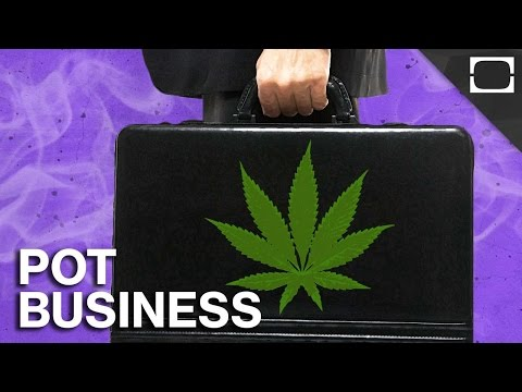 How The Government Is Hurting The Marijuana Business