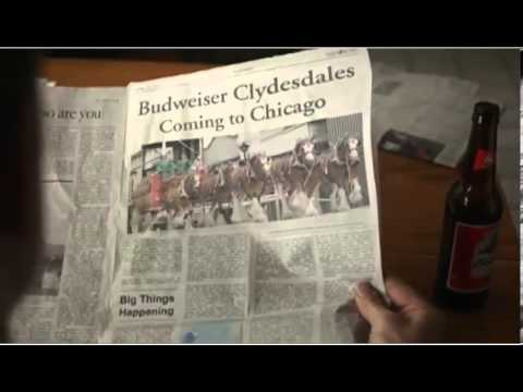 Anheuser-Busch Superbowl 2013 Ad Trainer and His Clydsedale