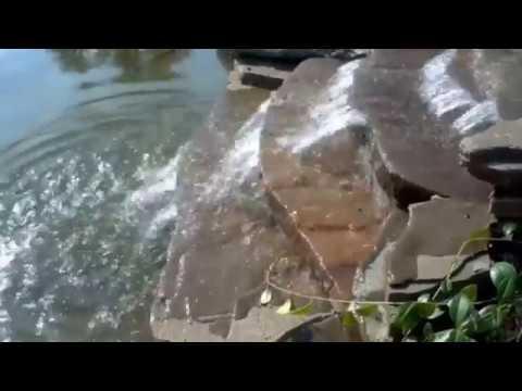 Гостевые дома в Анапе цены 2017, фото, с бассейном, у