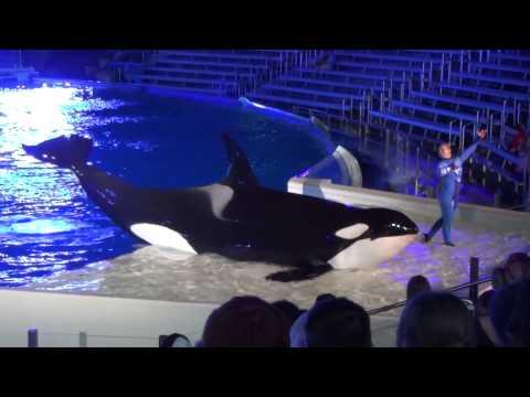 Night-time One Ocean - Full Show SeaWorld San Diego - April 2014