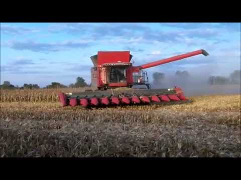 Massey Ferguson 9560 Combine with a 12 Row Corn Head - YouTube
