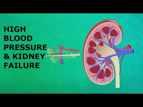 How High Blood Pressure Can Cause Kidney Failure In Hindi