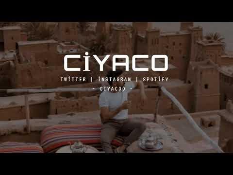 MUTİ - LE CANE feat. UZİ x CRİTİCAL x HEİJAN (Official Video)