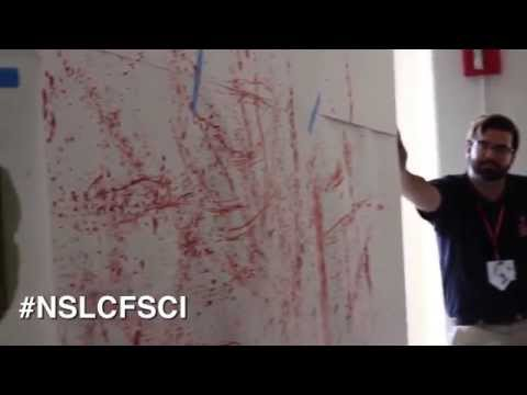 Forensic Science | Session 1