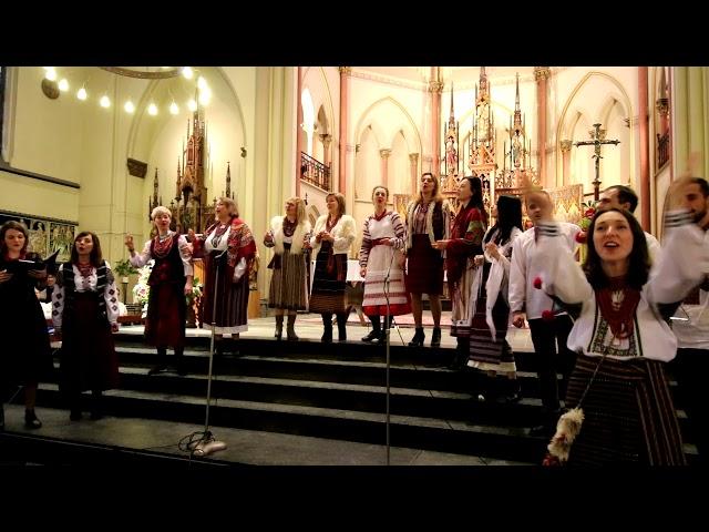 Народився Бог на сіні / слова та музика Ярини Тарасюк, аранжування Романа Стельмащука