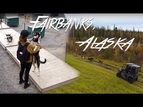 A Weekend In FAIRBANKS, ALASKA