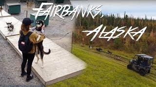 A Weekend in FAIRBANKS, ALASKA