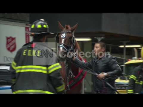 NY:HORSE-DRAWN CARRIAGE ACCIDENT