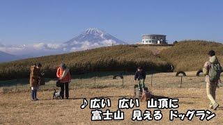 黒パグナイトの静岡 南箱根 十国峠 ケーブルカーで行く山頂 絶景のドッグラン☆彡