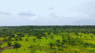 IMAGINE ( Liberia Virgin Land ) let's build