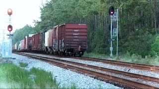 CSX Mixed Freight Train Through The Georgia Forest