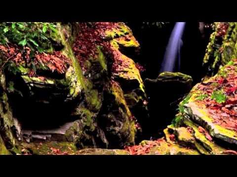 Hymnus-A Solis Ortus Cardine