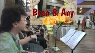 Bean and Any- violinist - string quartet - Musicians in Malaysia