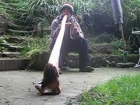 Didgeridoo and clapping sticks