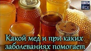 видео Пчелиный мед и его свойства