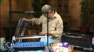 Starting seeds indoors |John Dromgoole |Central Texas Gardener