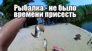 Клёв как на ЧЕРНЫХ КАМНЯХ Рыбалка на КРОКОДИЛЫ Самая дешевая и рабочая оснастка для ловли рыбы