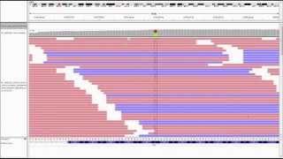 Ovation Target Enrichment Data Analysis Workflow