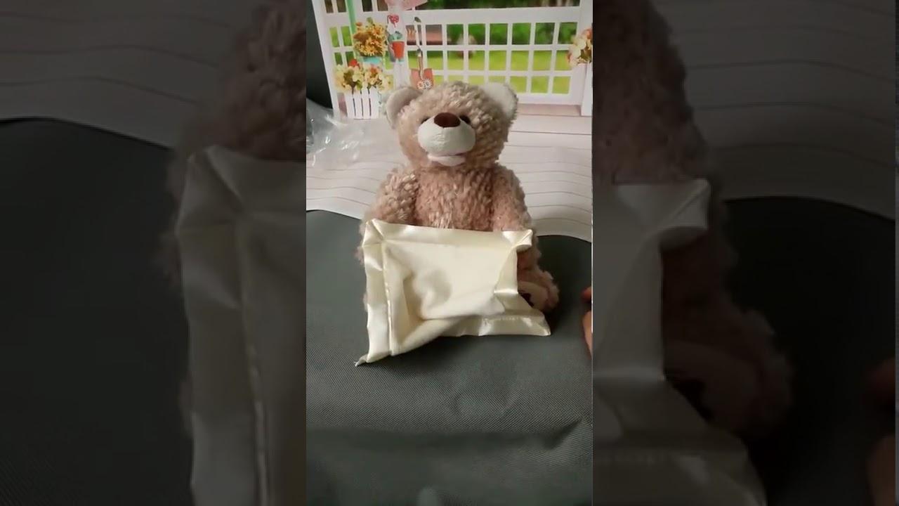 Personalized Peek A Boo Bear