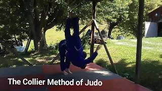 Daring judo counter to head kick...do at your own risk